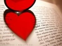 Chuyên nghiệp bằng trái tim