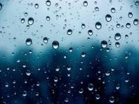Trà sữa là của ngày nắng hay mưa?
