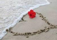 Bao giờ thì chúng ta hết bận – để yêu nhau?