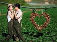 """Bộ tranh """"đọc vị"""" cảnh yêu xa """"đốn tim"""" các cặp đôi"""