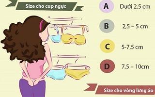 Giúp teengirl chọn loại áo ngực hoàn hảo chỉ trong 1 phút