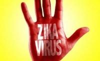 Chứng teo não: Không phải Zika mà là hóa chất diệt ấu trùng muỗi?