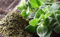 5 cách tự nhiên giúp chữa trị nấm 'vùng kín'