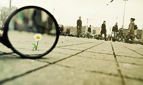 Thế giới không đón nhận bạn và đây là nguyên do.