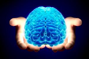 7 điều bạn làm ảnh hưởng đến khả năng não bộ