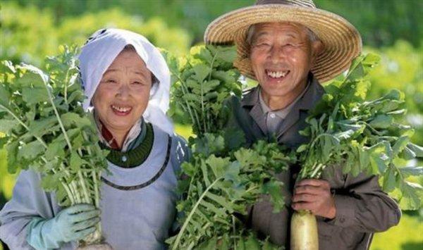 Khác biệt rất nhỏ trong đời sống người Nhật mang lại cho họ tuổi thọ cao
