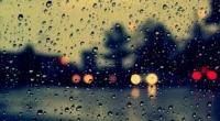 Cứ để mưa rơi