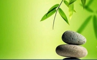 Suy ngẫm: Phần nào quan trọng nhất trên cơ thể chúng ta?