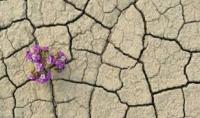 4 lý do khiến phụ nữ bị khô âm đạo