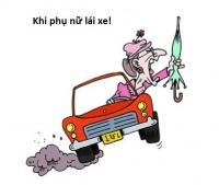 Phụ nữ học lái xe