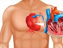 """Hội chứng """"trái tim vỡ"""": Tổn thương tim do stress"""