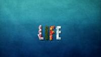 Những điều cực ý nghĩa khiến bạn thay đổi cách nhìn về cuộc sống