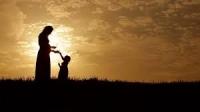 Chúng ta ai cũng lớn lên từ dòng sữa mẹ