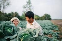 Người nông dân và sự bình yên ai cũng ao ước