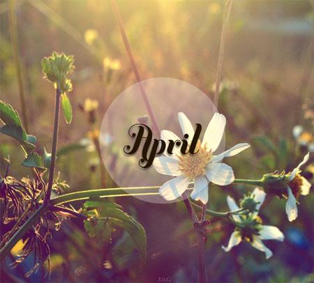 Tháng 4 và những điều bất ngờ nào đang đợi 12 con giáp?