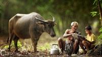 Những đứa trẻ sinh ra từ làng