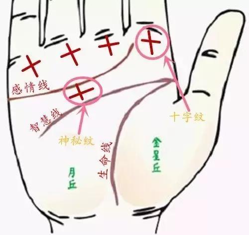 Nếu trong lòng bàn tay có hình chữ thập thì đó là dấu hiệu của thành công!