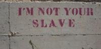 Bạn là kiểu đầy tớ nào?