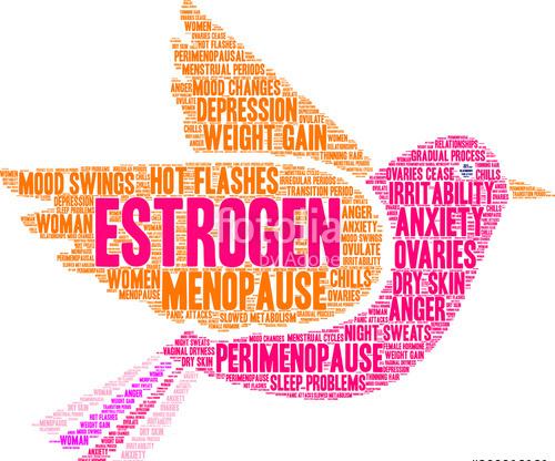 Estrogen giúp gì cho phụ nữ?