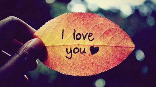Bạn có dám yêu và hết mình vì tình yêu?
