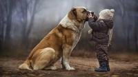 Lòng trung thành và những bài học đáng quý từ loài chó