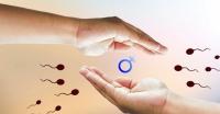 Khám sức khỏe sinh sản là khám những gì?