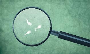 Những điều bạn cần biết về phương pháp bơm tinh trùng