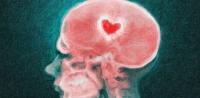 Dùng khoa học thần kinh để quên người yêu cũ