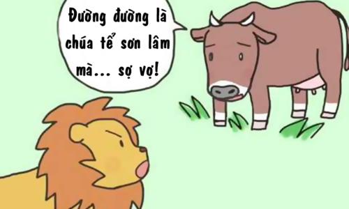 Sư tử cũng sợ vợ