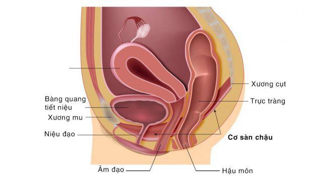 Phụ nữ nên đi khám ngay nếu thấy những triệu chứng này