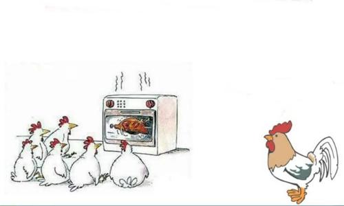 Khi gà mái nổi cơn ghen