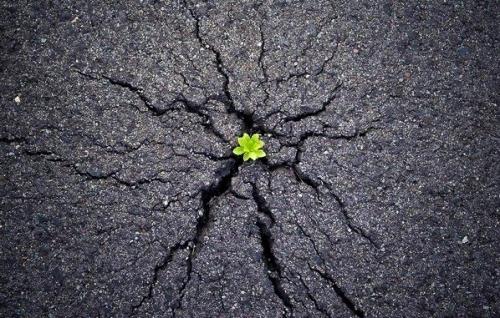Khi đã thích nghi được với khó khăn cũng là lúc khởi đầu mới sẽ đến.
