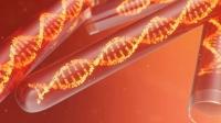 Tìm thấy bộ gene HIV dài nhất, cổ nhất từng được biết đến