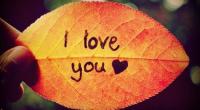 Có bao giờ em biết tôi yêu em nhiều ra sao?