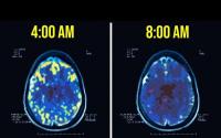 Lý do các tỷ phú yêu thích thức dậy lúc 4h sáng: Não thành miếng 'bọt biển', giúp họ có lợi thế hơn hẳn người thường